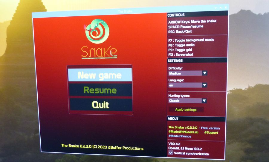 Snake game on Raspberry Pi OS